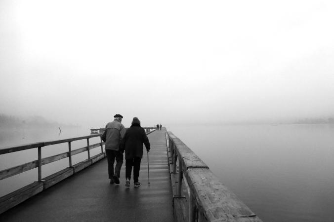pier at log boom park