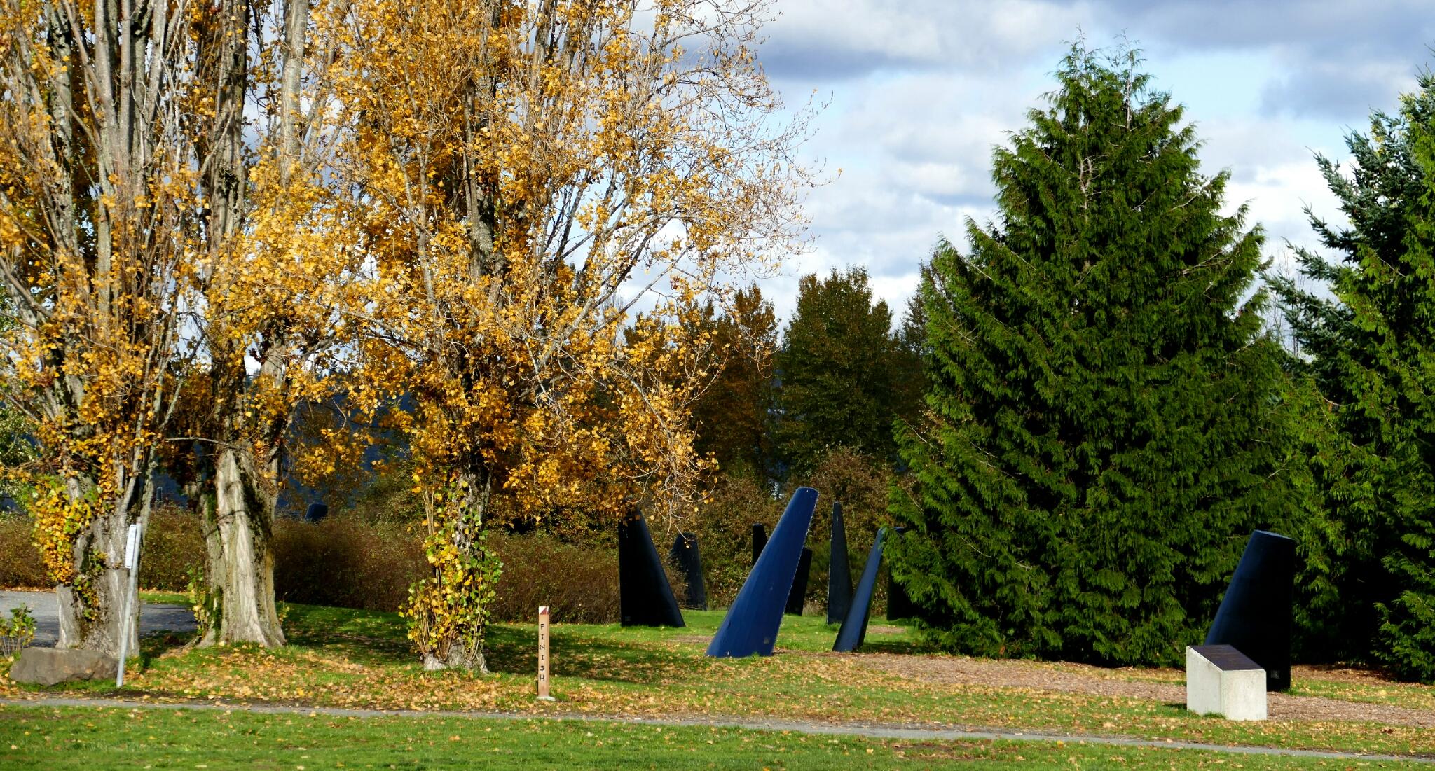 Seattle: Magnuson Park Pt. 6 – Kite Hill Area | Park Preview