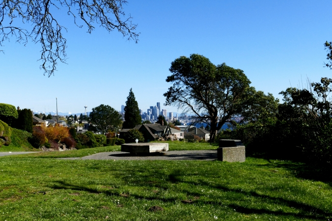magnolia boulevard bluff seattle