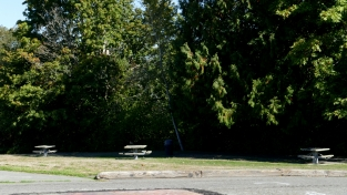 picnic area at daybreak star in discovery park