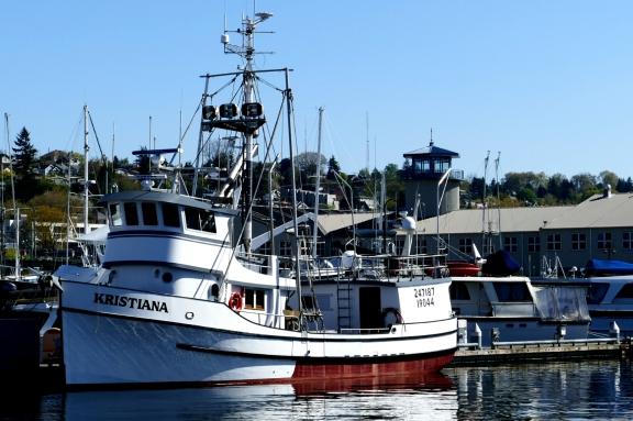 fishterm4-9-16-002
