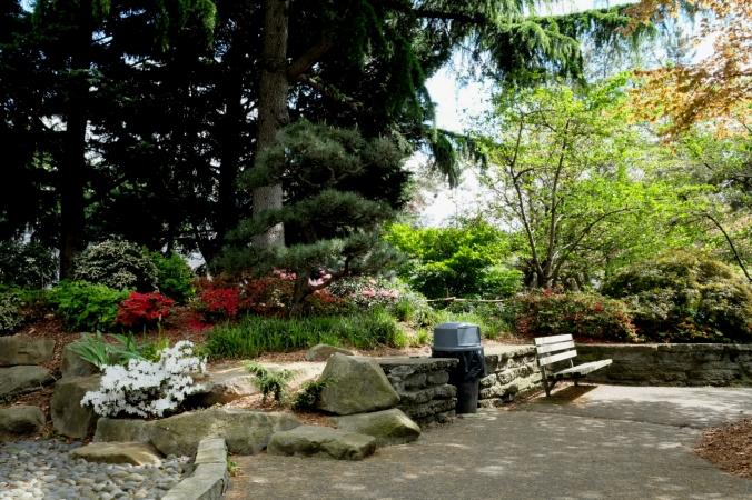 kobe terrace park in seattle