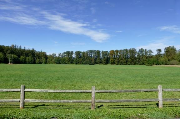 river meadows county park arlington