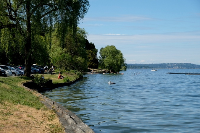 madrona park in seattle