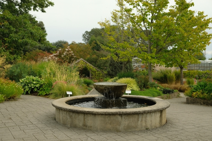 uw center for urban horticulture garden in seattle