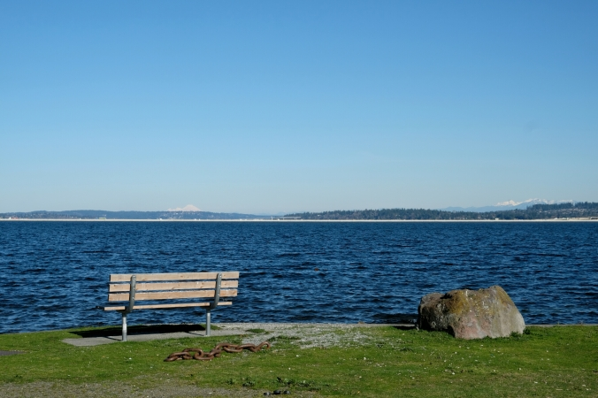 seattle stan sayres memorial park