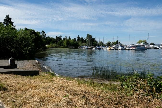 lakewood marina park in seattle