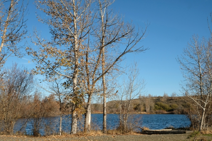 mccabe state park near ellensburg