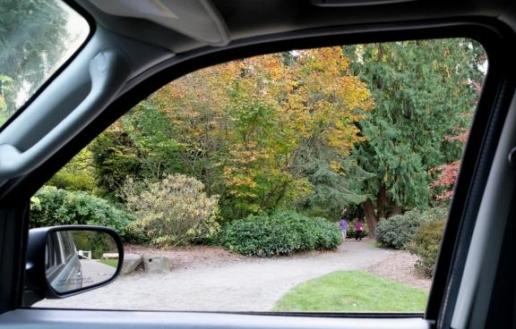 seattle washington park arboretum